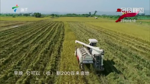 [HD][2019-10-09]我的国 我的家:田字格的接力跑