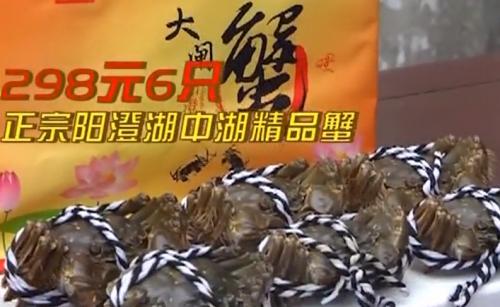 正宗阳澄湖中湖的精品蟹