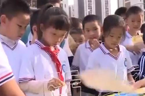 [2019-11-06]南方小记者:广州市黄埔区东荟花园小学科技节精彩纷呈