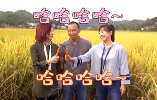 [2019-11-23]我爱返寻味:人手割水稻