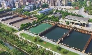 [HD][2019-12-01]广东视窗:江门鹤山:创新城乡水系统筹治理模式 沙坪河综合整治成效显著