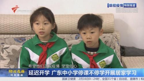 延迟开学 广东中小学停课不停学开展居家学习