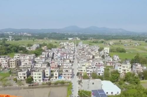 """阳江江城:着力做好""""农业强 农村美 农民富""""三篇文章"""