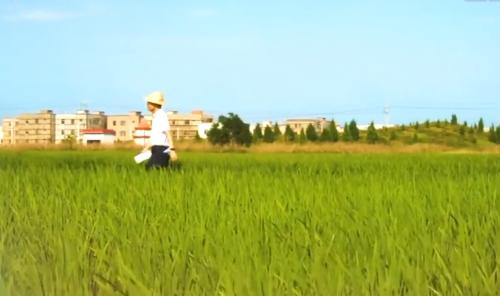 [HD][2020-05-26]社会纵横:刘小权 垃圾分类进乡村 共建宜居新家园