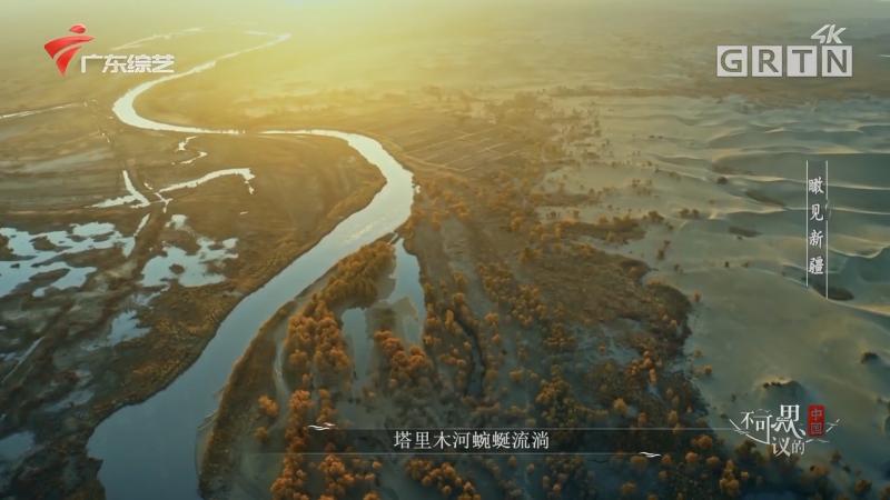 [HD][2020-10-03]不可思议的中国:瞰见新疆