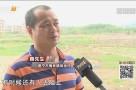 新闻调查:在外打工老家菜地被推平?村民控诉农地遭违建!