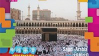 沙特阿拉伯 婚礼