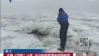 """瑞士:夫妻""""沉睡""""75年 冰川中发现遗体保存如初"""