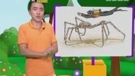 [2017-09-11]小桂英语:最大的螃蟹