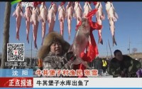 沈阳:法库冬捕节 头鱼拍出69万元高价