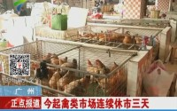 广州:今起禽类市场连续休市三天