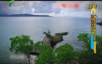 广东卫视《海岛之恋》 1月14日开播