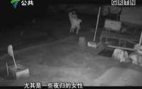 [2017-07-14]天眼追击:暗夜惊魂头盔男