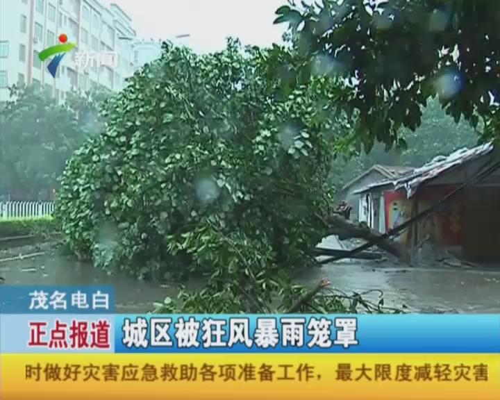 茂名电白:城区被狂风暴雨笼罩