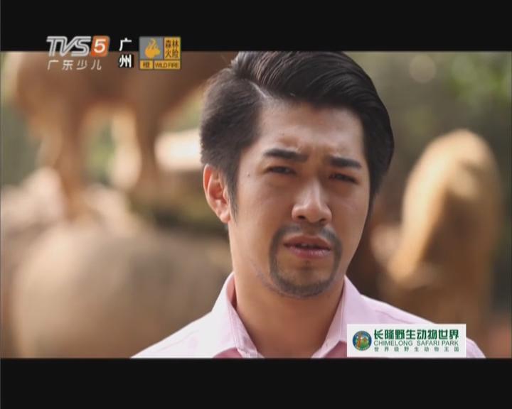 20151031《动物笑当家》:第十四集  黄金牛馍王