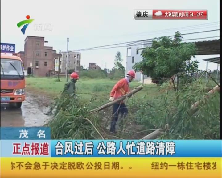 茂名:台风过后  公路人忙道路清障