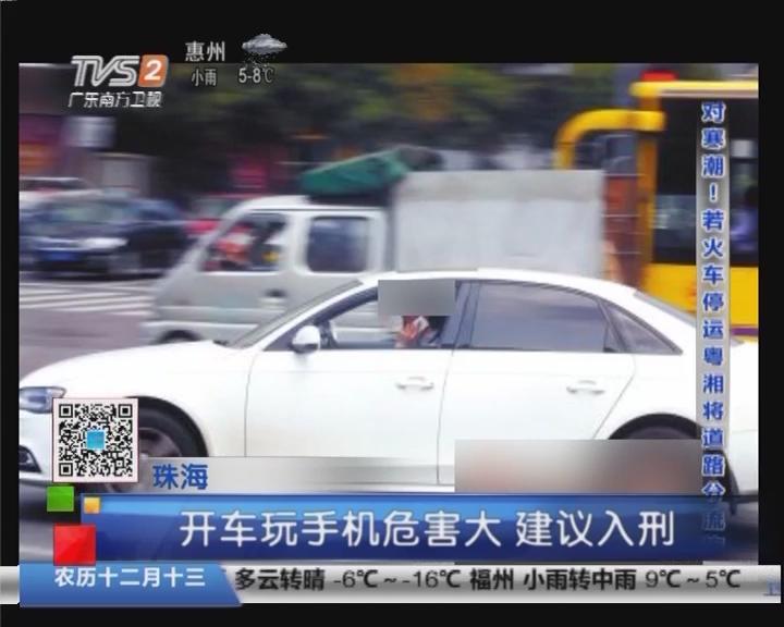 珠海:开车玩手机危害大 建议入刑
