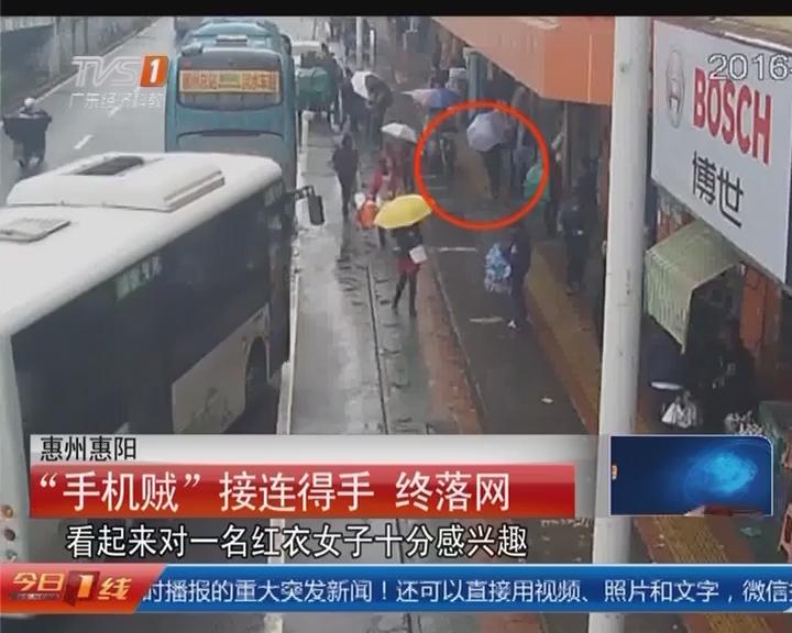 """惠州惠阳:""""手机贼""""接连得手 终落网"""