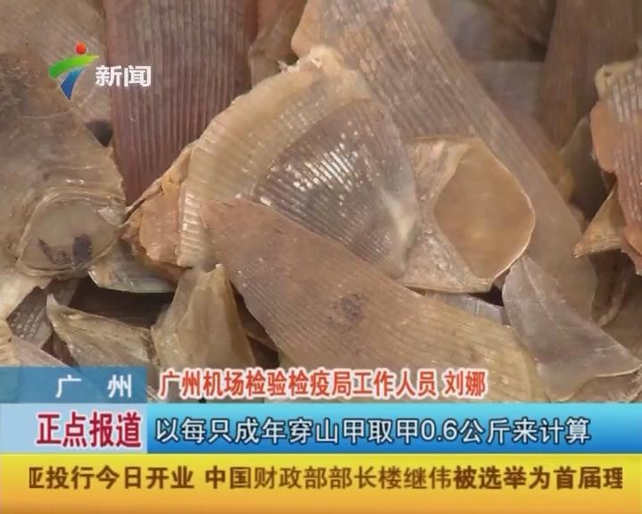 广州:白云机场打击携带濒危野生动植物入境