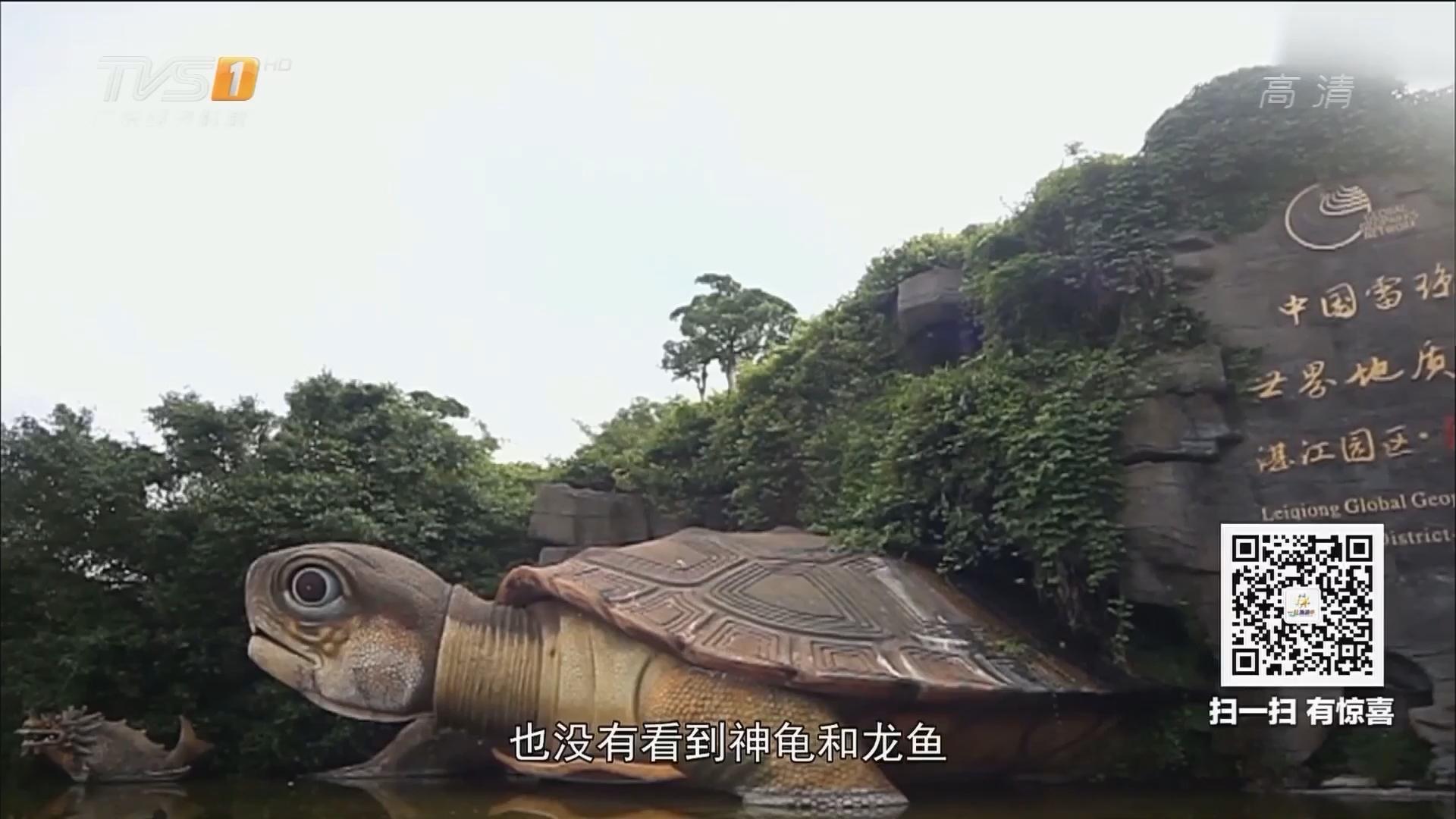 神龟和龙鱼是不是真的存在