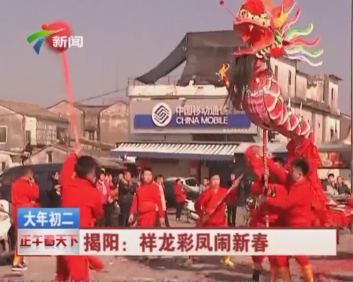 揭阳:祥龙彩凤闹新春