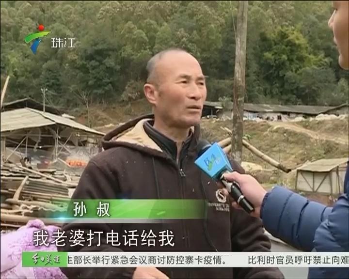 梅州:山体滑坡 鸡棚倒塌砸死8000多只鸡