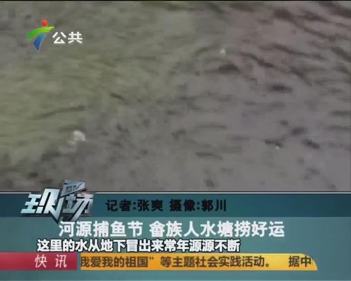 河源捕鱼节 畲族人水塘捞好运