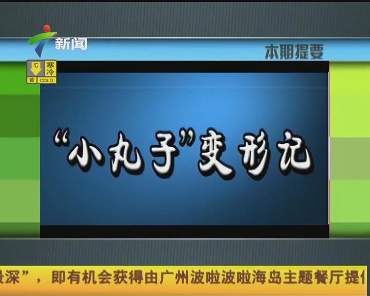 """""""小丸子""""变形记"""