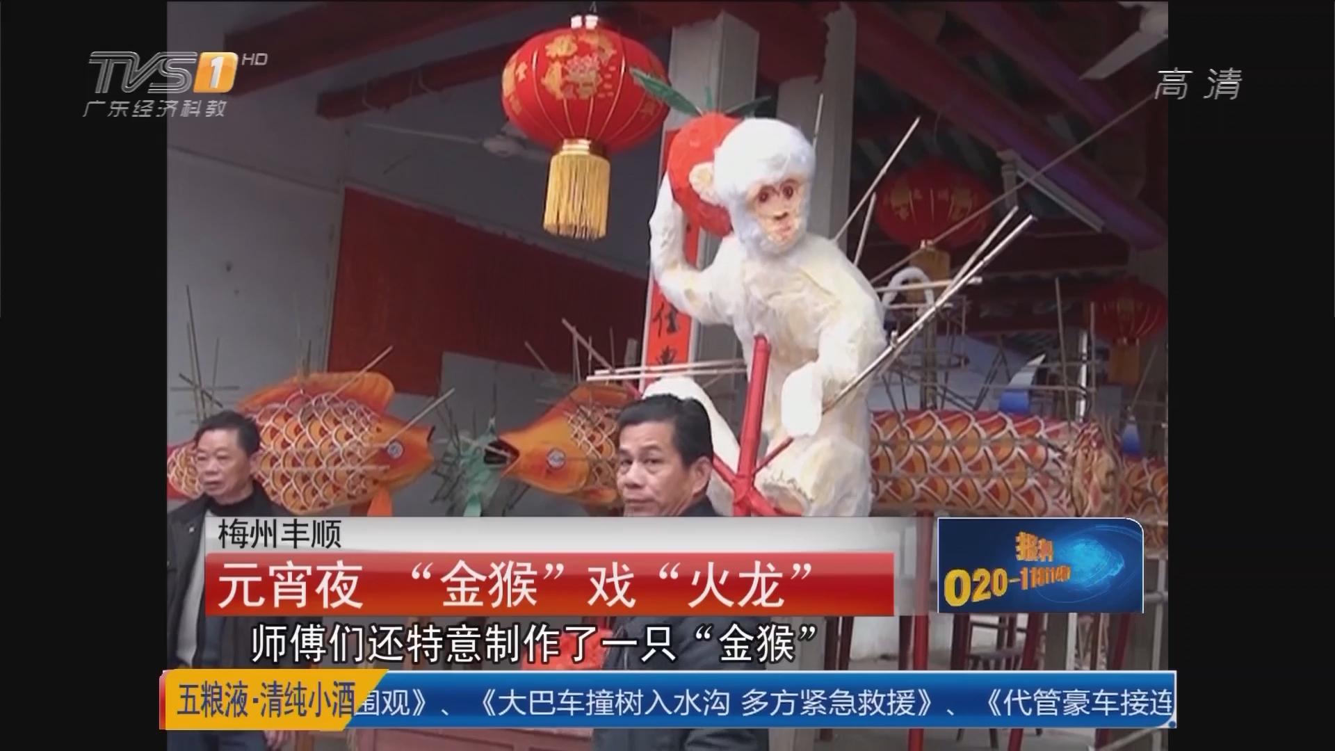 """梅州丰顺:元宵夜 """"金猴""""戏""""火龙"""""""
