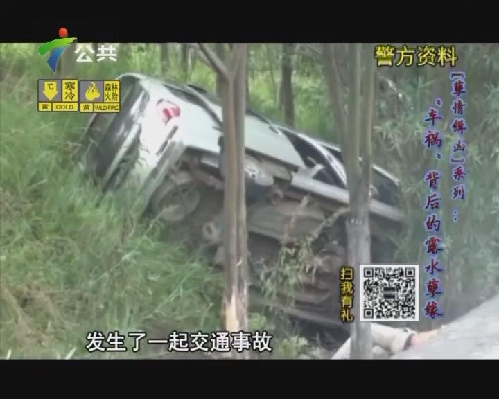 """""""孽情缉凶""""系列:""""车祸""""背后的露水孽缘"""