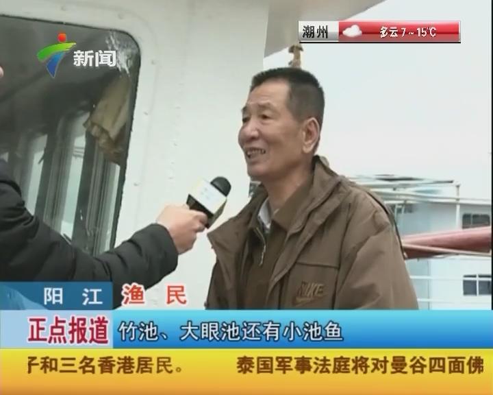 阳江:闸坡渔货交易畅旺
