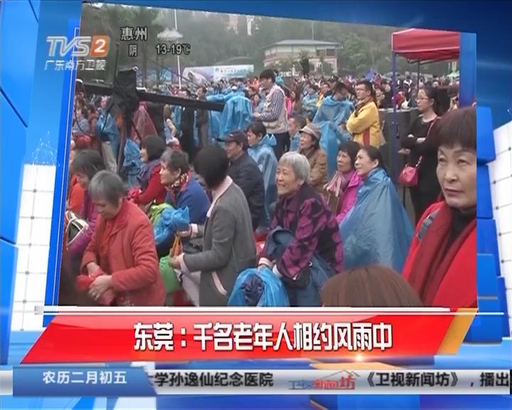 东莞:千名老年人相约风雨中