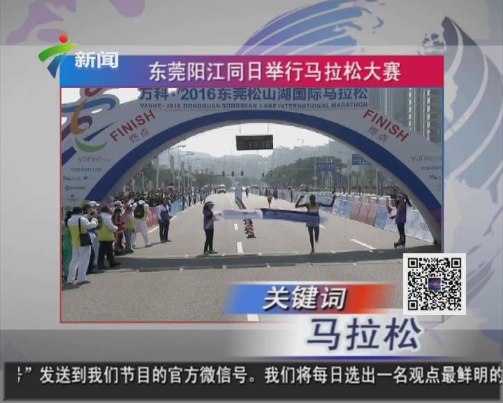 东莞阳江同日举行马拉松大赛