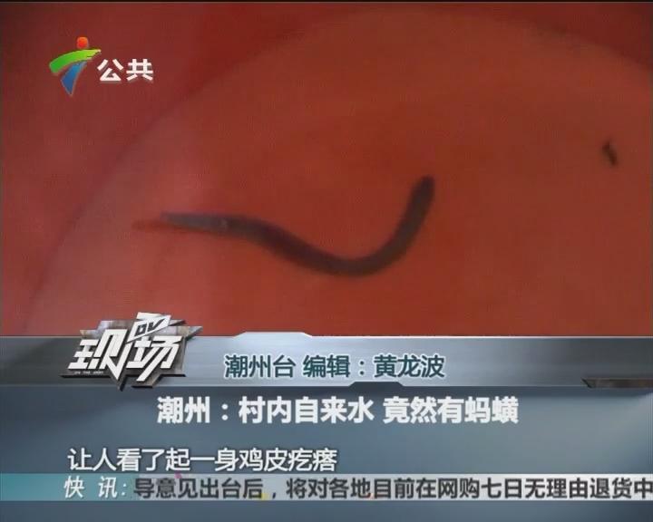 潮州:村内自来水 竟然有蚂蟥