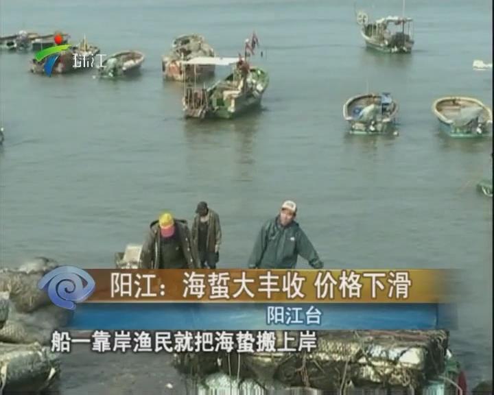 阳江:海蜇大丰收 价格下滑
