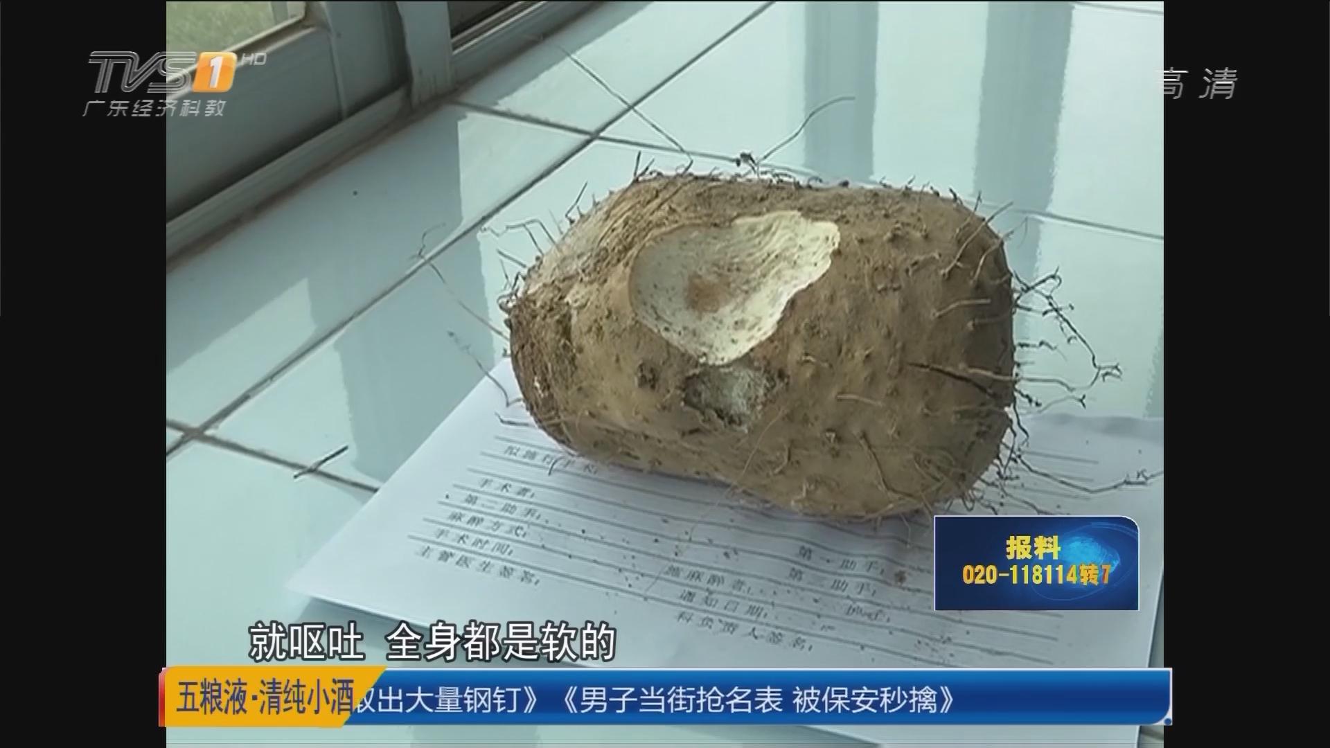 关注食品安全:惠州 勿食不明食物 一家人中毒幸无恙