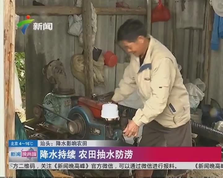 汕头:降水影响农田 降水持续 农田抽水防涝