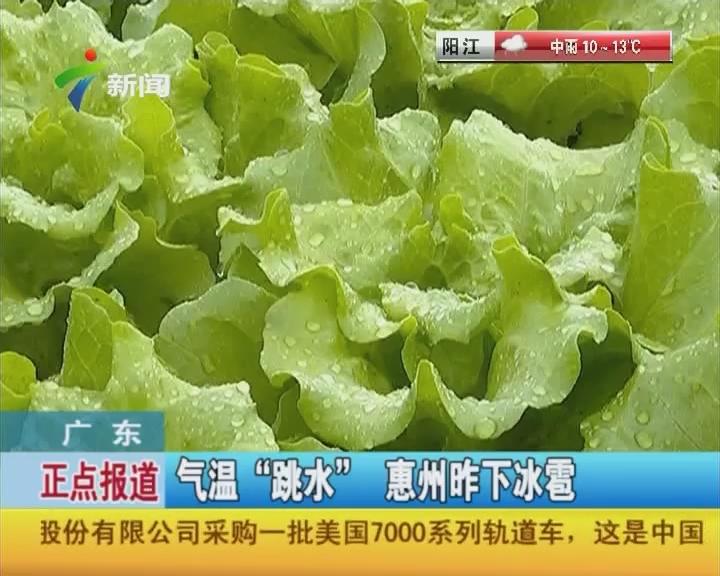 """广东:气温""""跳水""""惠州昨下冰雹"""
