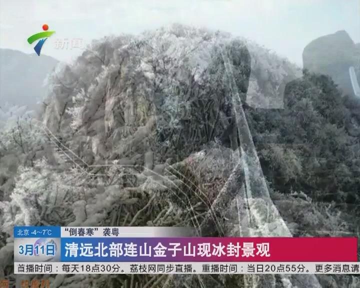 """""""倒春寒""""袭粤 清远北部连山金子山现冰封景观"""