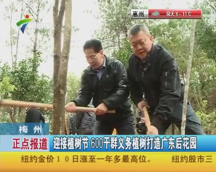 梅州:迎接植树节 600干群义务植树打造广东后花园