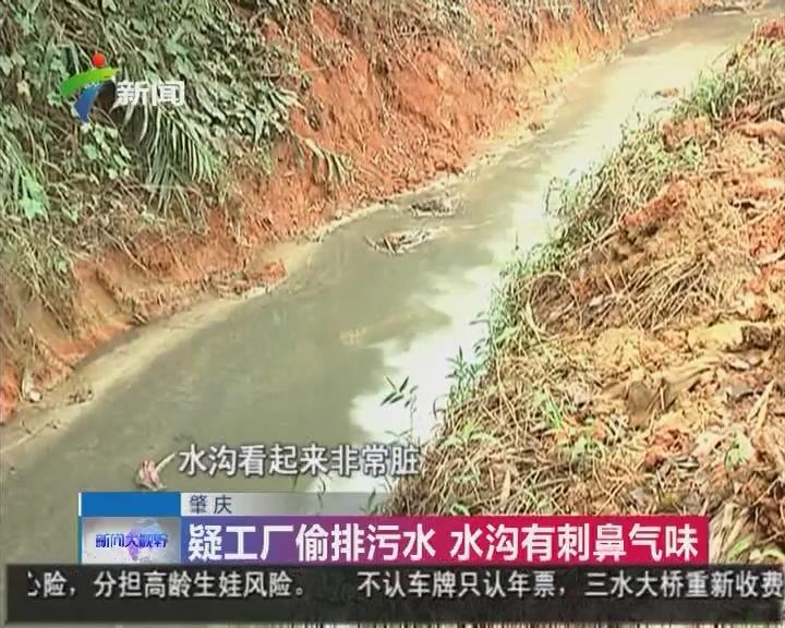 肇庆:疑工厂偷排污水 水沟有刺鼻气味