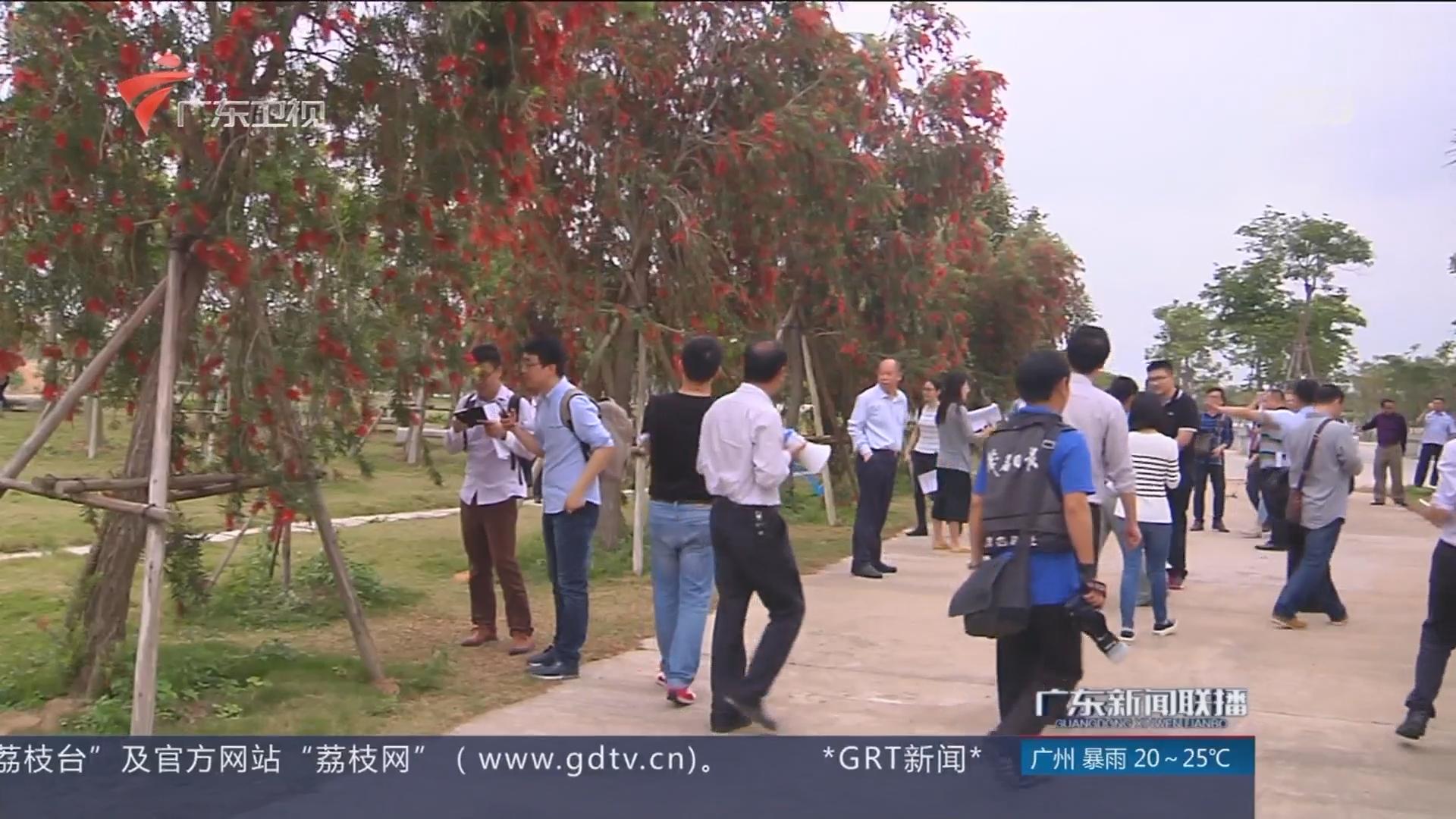 茂名:露天矿坑变成生态公园