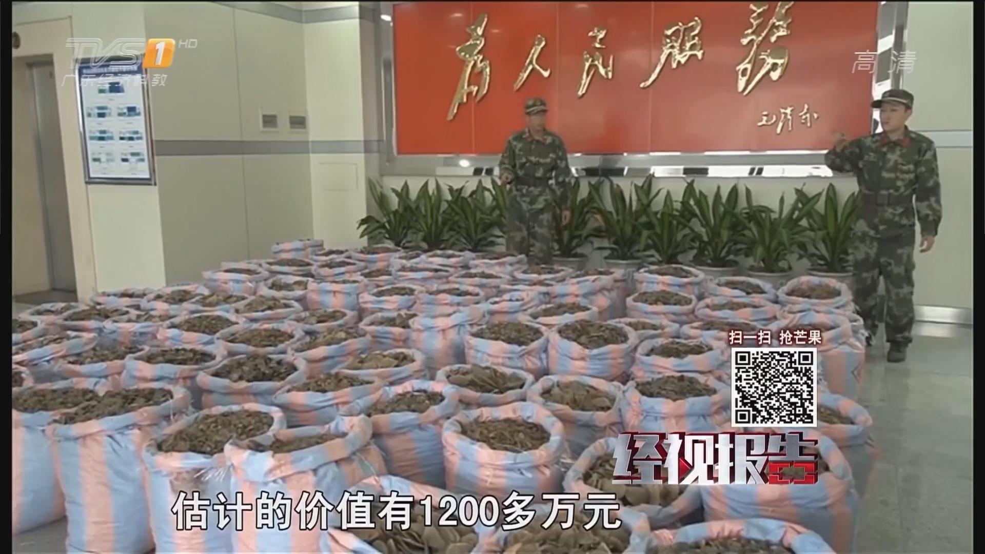 中山:男子走私1.6吨鳞片 遇边检 跑了