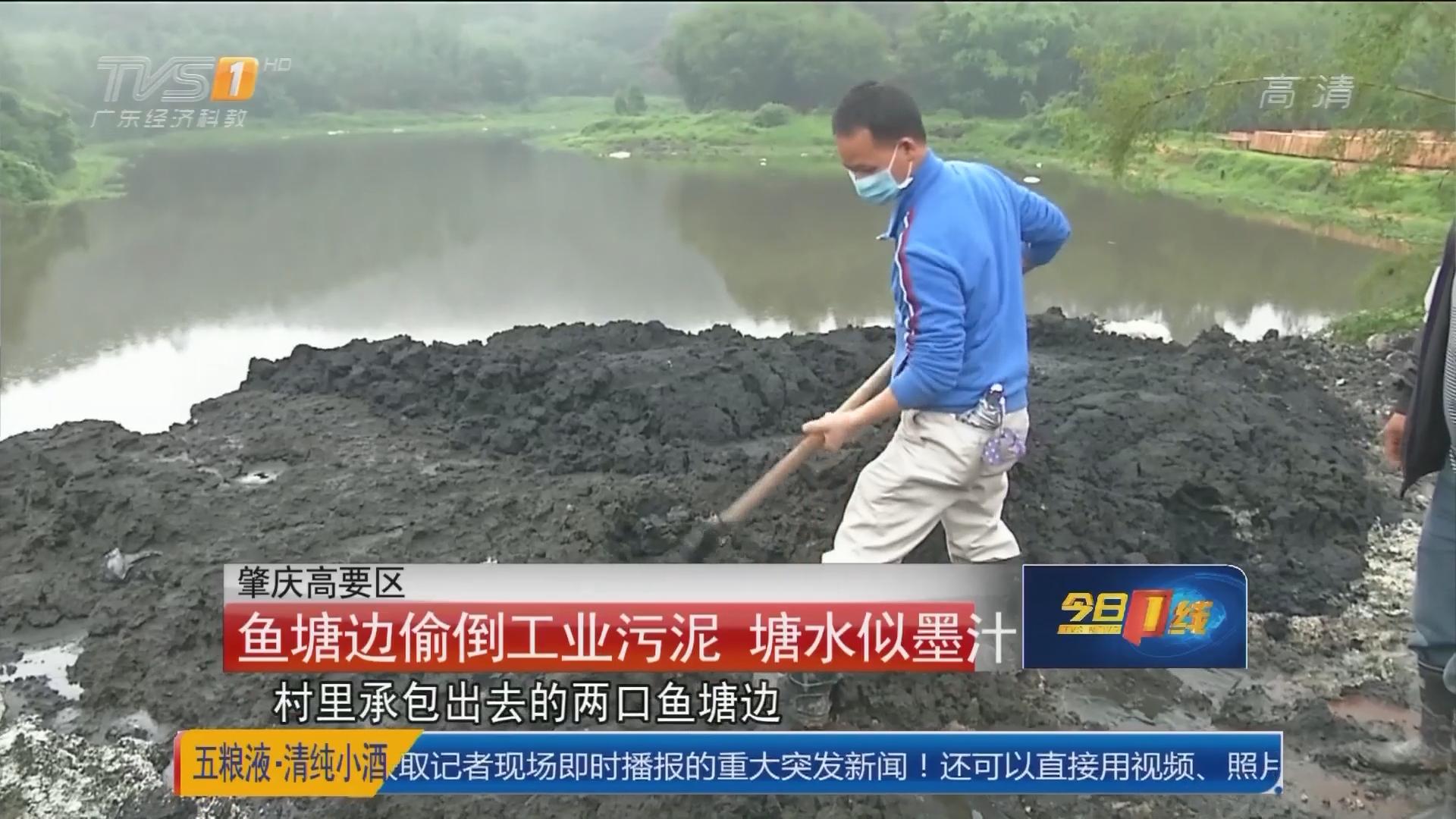 肇庆高要区:鱼塘边偷倒工业污泥 塘水似墨汁