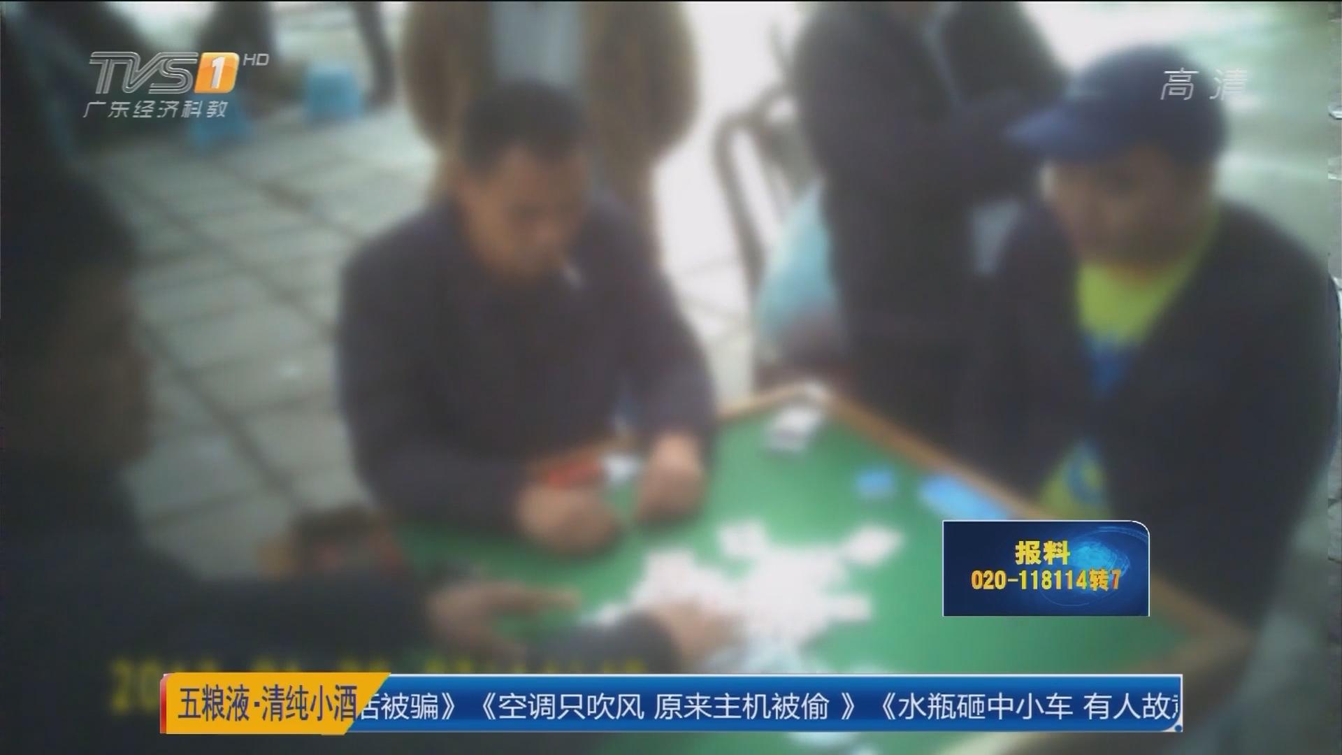 茂名茂南区:人行横道上直接开赌 6人被查处