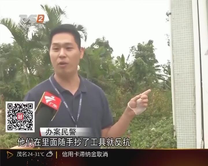 """""""2016飓风""""行动:江门台山 盗窃4000尾鳗鱼苗 4人团伙被刑拘"""