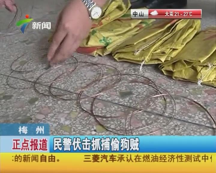 梅州:民警伏击抓捕偷狗贼