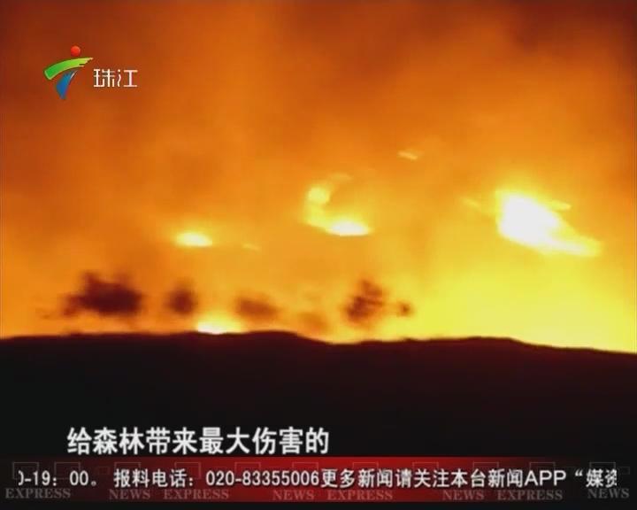 梅州:首立法听证 拟禁止上坟烧纸烧香烛