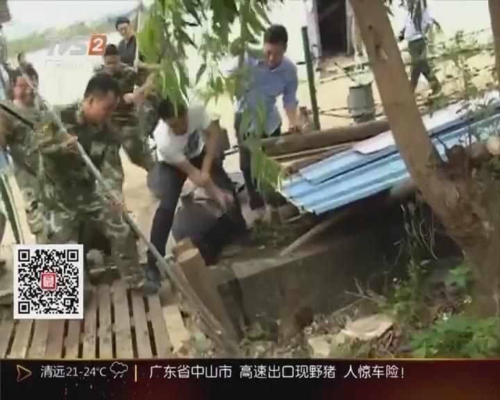 广东省中山市:高速出口现野猪 人惊车险!