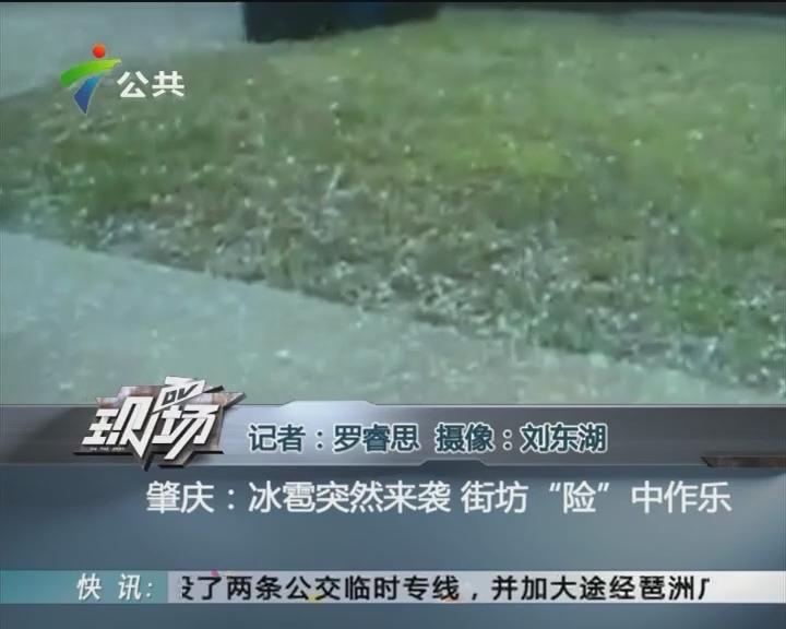 """肇慶:冰雹突然來襲 街坊""""險""""中作樂"""